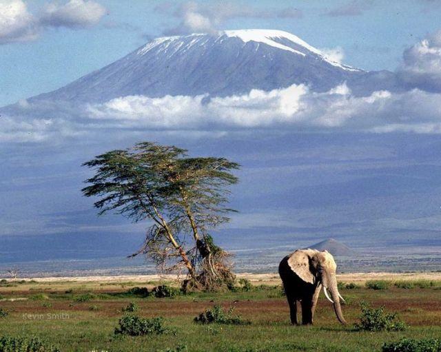 être en voyage Kilimadjaro