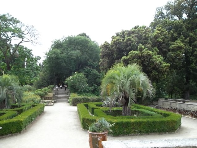 Jardin botanique 4