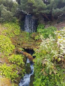 Royal Botanic Garden Cascade