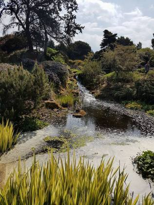 Royal Botanic Garden eau